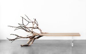 BENCH FALLENTREE SCULPTED OAK AND BOROSILICATE GLASS BASE