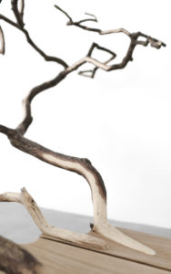 DETAILS BENCH FALLENTREE SCULPTED OAK OAK BRANCHES